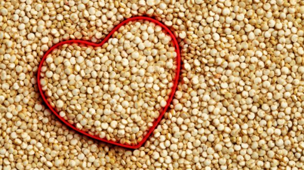 quinoa in hindi quinoa indian name kinwa kinuwa what is quinoa in hindi kinva quinoa hindi quinoa hindi name क्विनोआ quinoa in hindi name quinoa seeds in hindi kinova in hindi kinnova quinoa in hindi quinoa meaning in hindi quinoa in hindi quinoa meaning what is quinoa in hindi quinoa meaning quinoa hindi quinoa indian name quinoa meaning in hindi quinoa in hindi name quinoa hindi name quinoa hindi meaning meaning of quinoa in hindi hindi name of quinoa quinoa in hindi is called hindi meaning of quinoa क्विनोआ quinoa in hindi meaning quinoa means in hindi quinoa name in hindi meaning of quinoa quinoa seeds in hindi quinoa indian name quinoa meaning in hindi name quinoa in hindi called quinoa means quinoa grain in hindi hindi name for quinoa kinova in hindi quinoa food in hindi what is quinoa in hindi called what is the meaning of quinoa in hindi what is quinoa called in hindi language hindi word for quinoa kinwa grain in hindi quinoa in hindi sabudana quinoa in hindi meaning quinoa called in hindi meaning of quinoa hindi name for quinoa seed quinoa in hindi name meaning of quinoa in hindi quinoa hindi name quinoa hindi meaning quinoa hindi quinoa seeds in hindi quinoa means quinoa means in hindi quinoa in hindi called quinoa in india name quinoa grain in hindi hindi name for quinoa kinwa grain in hindi what is quinoa in hindi called kinova grain indian name for quinoa grain grains meaning in hindi quinoa in hindi is called indian name for quinoa grain what is the meaning of quinoa in hindi quinoa food in hindi bare meaning in hindi what is quinoa called in hindi language quinoa meaning in hindi name advantages meaning in hindi kinova in hindi quinoa translate in hindi tomato meaning in hindi hindi name for quinoa seed puff meaning in hindi vidhi meaning in hindi organic food meaning in hindi potassium meaning in hindi bloating means in hindi kinova food meaning of puff in hindi rice bran meaning in hindi kale means in hindi bran meaning in hindi wretch meaning in hindi possibility meaning in hindi keen means in hindi quinoa meaning in tamil name define quinoa quinoa in india is called bloating meaning in hindi hindi meaning of bloating bile meaning in hindi meaning of bran in hindi meaning of bloating in hindi meaning of bile in hindi wah meaning in hindi bloating meaning hindi keen meaning in hindi kinova rice kinuwa meaning of kale in hindi kinnova keen meaning in hindi क्विनोआ quinoa in hindi quinoa in hindi quinoa meaning in hindi quinoa meaning in hindi what is quinoa in hindi quinoa indian name quinoa hindi meaning of quinoa in hindi quinoa hindi name quinoa in hindi sabudana quinoa in hindi meaning quinoa in hindi name quinoa hindi meaning quinoa in hindi is called quinoa seeds in hindi quinoa means in hindi hindi name of quinoa quinoa name in hindi hindi meaning of quinoa क्विनोआ quinoa meaning in hindi name what is quinoa called in hindi quinoa in hindi called kinova in hindi quinoa in hindi meaning quinoa grain in hindi what is the meaning of quinoa in hindi quinoa food in hindi meaning of quinoa in hindi meaning of quinoa hindi word for quinoa quinoa called in hindi kinwa grain in hindi what is quinoa called in hindi language quinoa means in hindi hindi name for quinoa hindi name for quinoa seed quinoa translate in hindi what is quinoa in hindi called what is quinoa in hindi called quinoa meaning indian name for quinoa grain what is the meaning of quinoa in hindi quinoa in india name quinoa meaning in punjabi quinoa in marathi meaning of quinoa in gujarati quinoa meaning in marathi grain meaning in hindi kinova in hindi quinoa translate in hindi quinoa meaning in gujarati anaj meaning in telugu quinoa means in telugu quinoa seeds in marathi sabudana meaning in telugu quinoa in gujarati quinoa in telugu name what is quinoa called in marathi grain meaning in hindi quinoa in telugu meaning quinoa in marathi name kinova grain meaning of grain in hindi quinoa meaning in telugu quinoa seeds meaning in telugu puff meaning in hindi kinova seeds quinoa telugu meaning hindi meaning of grain quinoa in telugu language potassium meaning in hindi forming meaning in hindi sabudana history in hindi gluten free meaning in hindi food grain meaning in hindi sabudana benefits in hindi grains meaning in hindi what is quinoa in telugu calcium meaning in hindi final meaning in hindi quinoa in telugu called crop meaning in hindi quinoa in india is called rice meaning in hindi white flour meaning in hindi soap meaning in hindi organic food meaning in hindi food grains meaning in hindi kale meaning in hindi what is quinoa called in telugu pseudo meaning in hindi salad meaning in hindi gluten means in hindi grain hindi meaning recipe meaning in hindi sabudana meaning kinnova proteas meaning in hindi handy meaning in hindi theme meaning in hindi meaning of sabudana in english quinoa meaning in tamil name