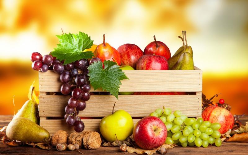 फलों से जुड़े अनसुने रोचक तथ्य Facts of Fruits in Hindi